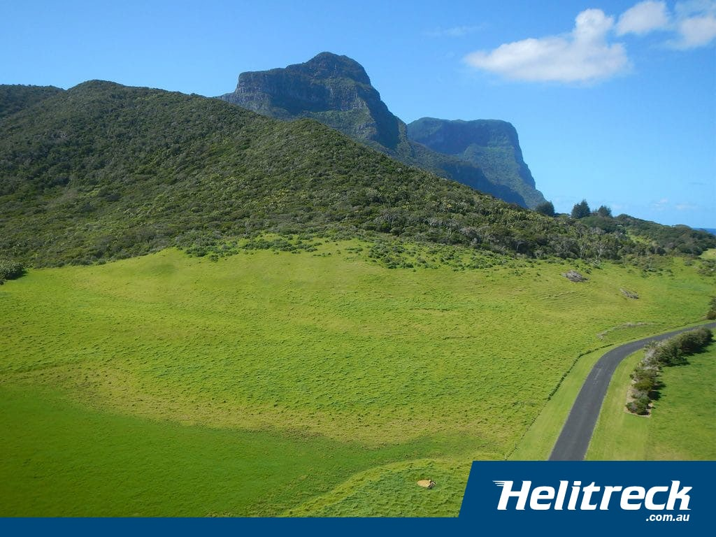 Office of Environment & Heritage – Lord Howe Island 2020